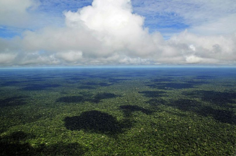 circuit-amazonien-en-equateur