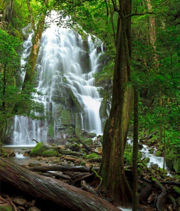 rincon-de-la-vieja-national-parc