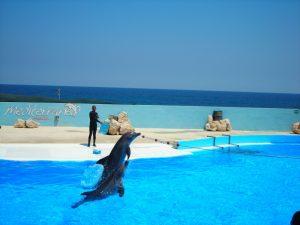 tourisme-malte