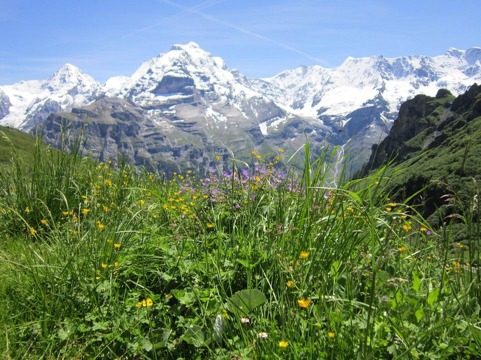 photo-suisse