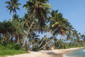 splendeurs-touristiques-du-sri-lanka