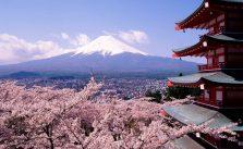 organisation-d-un-voyage-pour-ce-au-japon
